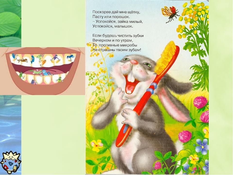 брюнетка картинка белка чистит зубы вам этот