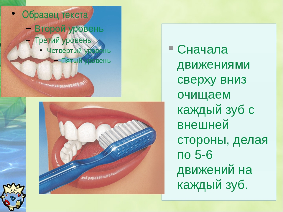 Сначала движениями сверху вниз очищаем каждый зуб с внешней стороны, делая п...