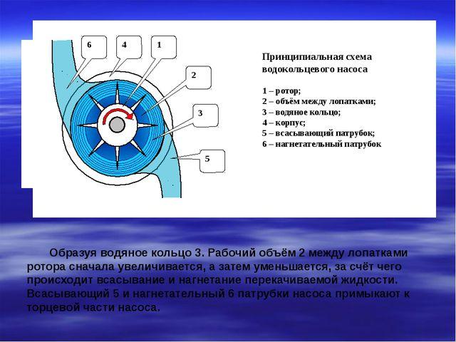 Образуя водяное кольцо 3. Рабочий объём 2 между лопатками ротора сначала уве...