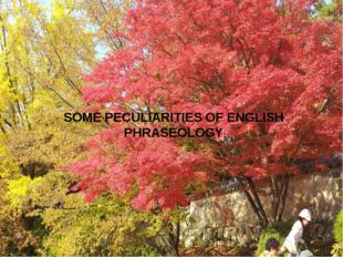 SOME PECULIARITIES OF ENGLISH PHRASEOLOGY
