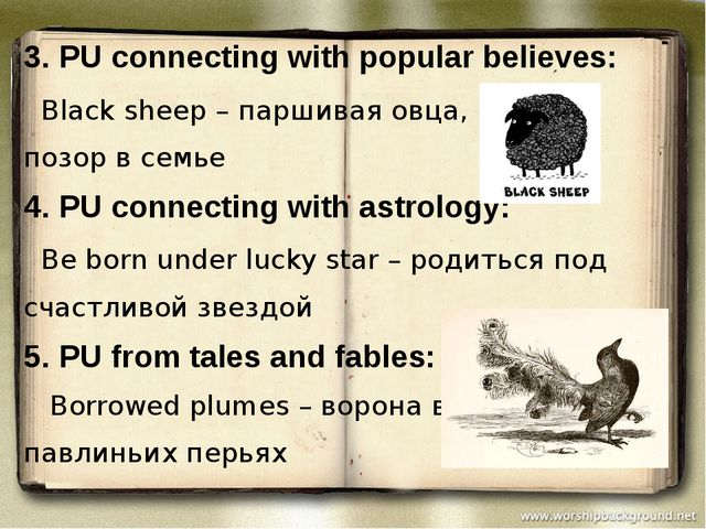 3. PU connecting with popular believes: Black sheep – паршивая овца, позор в...