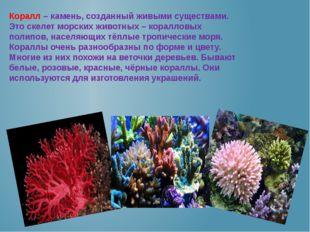 Коралл – камень, созданный живыми существами. Это скелет морских животных – к