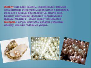 Жемчуг ещё один камень, «рождённый» живыми организмами. Жемчужины образуются