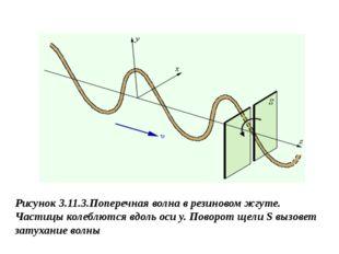 Рисунок 3.11.3.Поперечная волна в резиновом жгуте. Частицы колеблются вдоль о