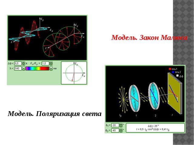 Модель. Поляризация света Модель. Закон Малюса