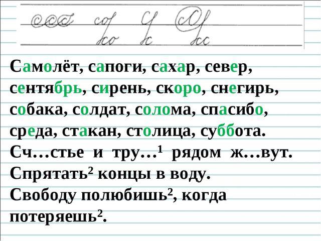 Чистописание Самолёт, сапоги, сахар, север, сентябрь, сирень, скоро, снегирь...