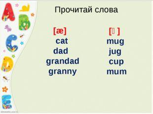 Прочитай слова [æ] cat dad grandad granny [ᴧ] mug jug cup mum