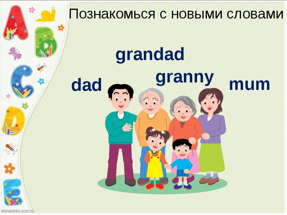 Познакомься с новыми словами mum granny grandad dad