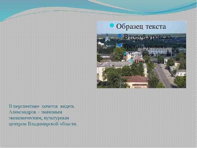 В перспективе хочется видеть Александров – значимым экономическим, культурны...