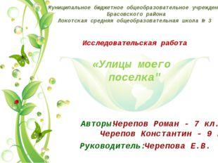 Муниципальное бюджетное общеобразовательное учреждение Брасовского района Лок