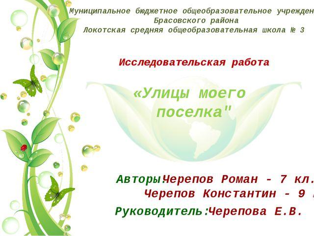 Муниципальное бюджетное общеобразовательное учреждение Брасовского района Лок...