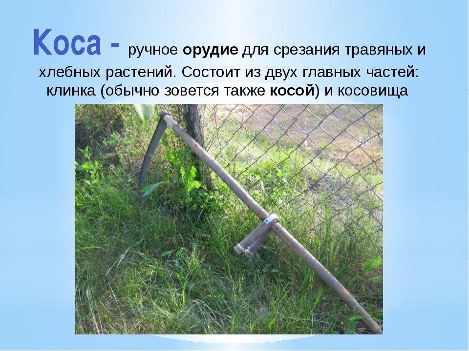 Коса - ручное орудие для срезания травяных и хлебных растений. Состоит из дву...