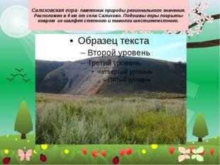 Салиховская гора- памятник природы регионального значения. Расположен в 4 км