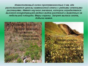 Известняковый склон протяженностью 3 км, где располагаются ценозы каменистой