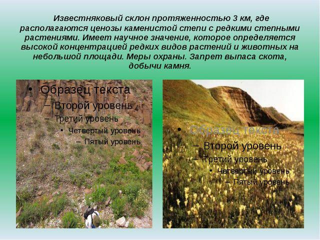 Известняковый склон протяженностью 3 км, где располагаются ценозы каменистой...