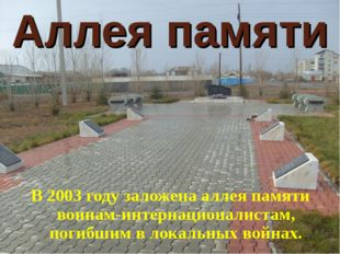 Аллея памяти В 2003 году заложена аллея памяти воинам-интернационалистам, пог