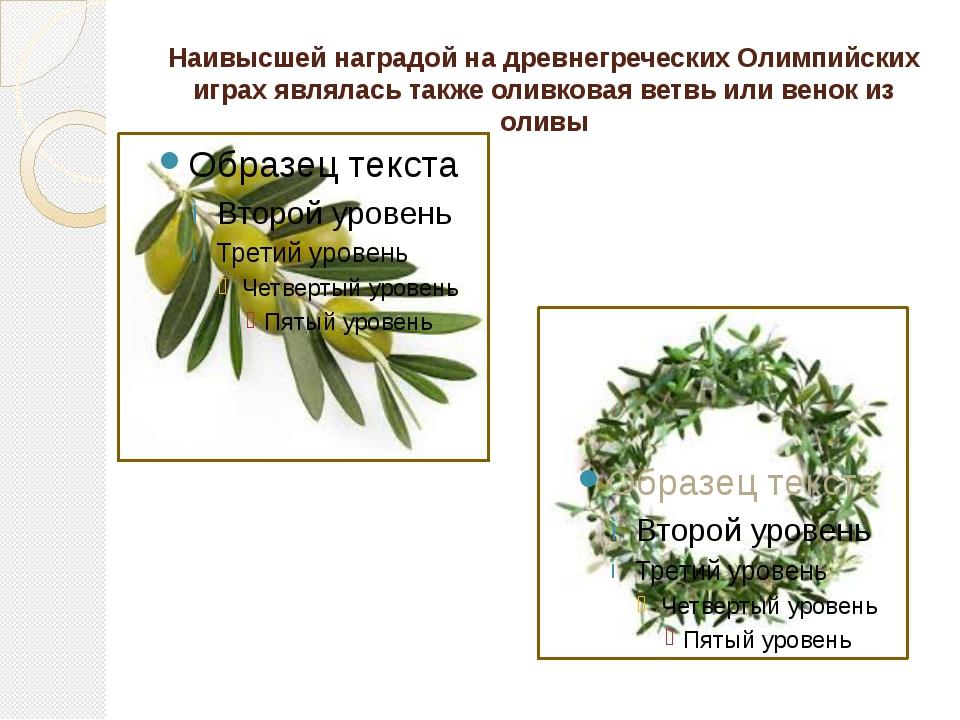 Наивысшей наградой на древнегреческих Олимпийских играх являлась также оливко...