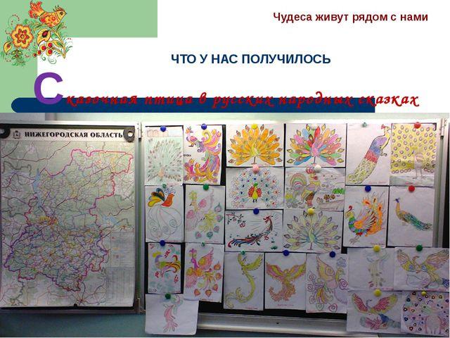 ЧТО У НАС ПОЛУЧИЛОСЬ Сказочная птица в русских народных сказках Чудеса живут...