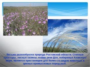 Весьма разнообразна природа Ростовской области. Степные просторы, лесные оази