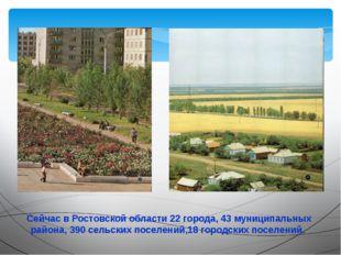 Сейчас в Ростовской области 22 города, 43 муниципальных района, 390 сельских