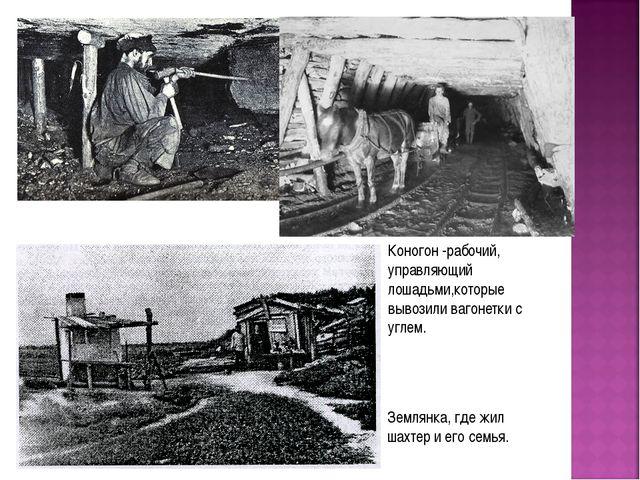 Землянка, где жил шахтер и его семья. Коногон -рабочий, управляющий лошадьми,...