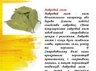 Лавровий лист Лавровий лист - лист вічнозеленого чагарнику або дерева (Laurus