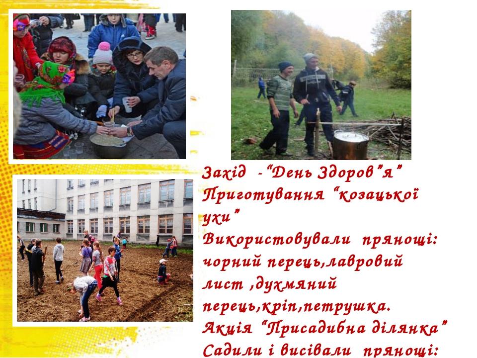 """Захід -""""День Здоров""""я"""" Приготування """"козацької ухи"""" Використовували прянощі:..."""