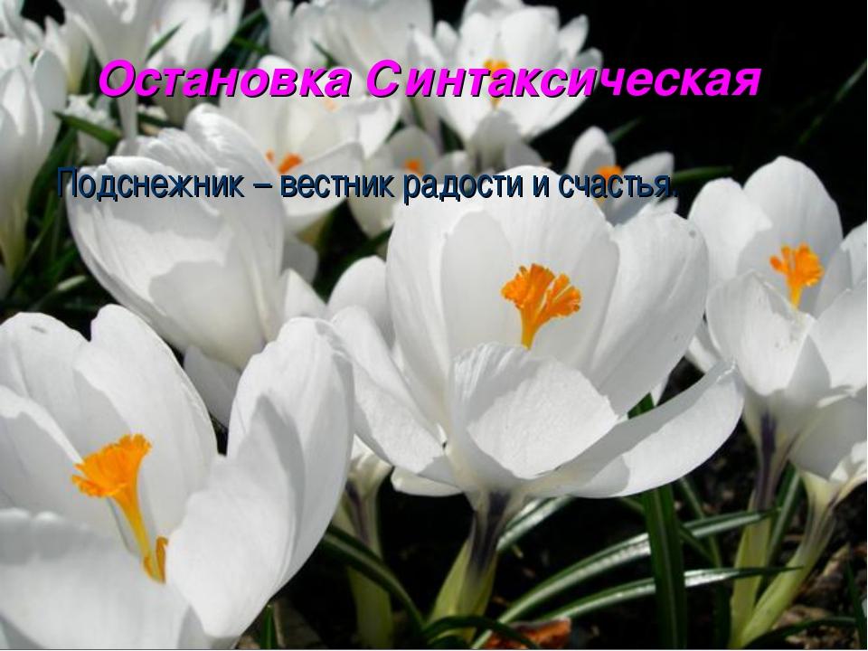 Остановка Синтаксическая Подснежник – вестник радости и счастья.