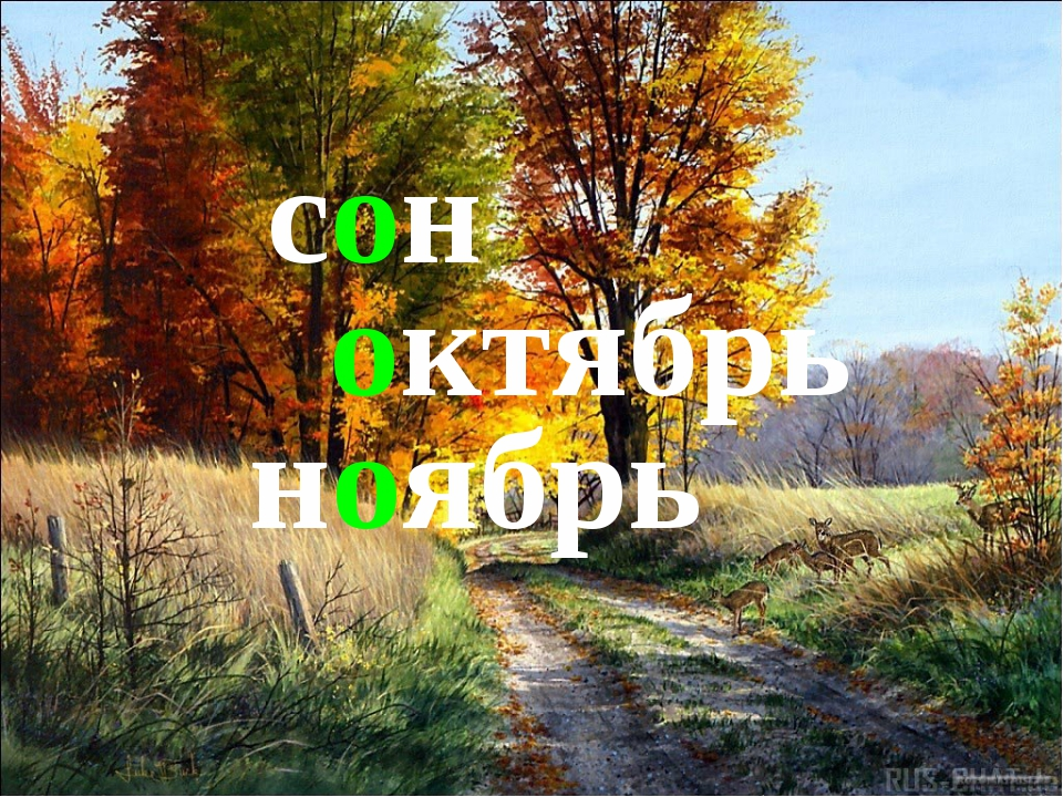 сон октябрь ноябрь
