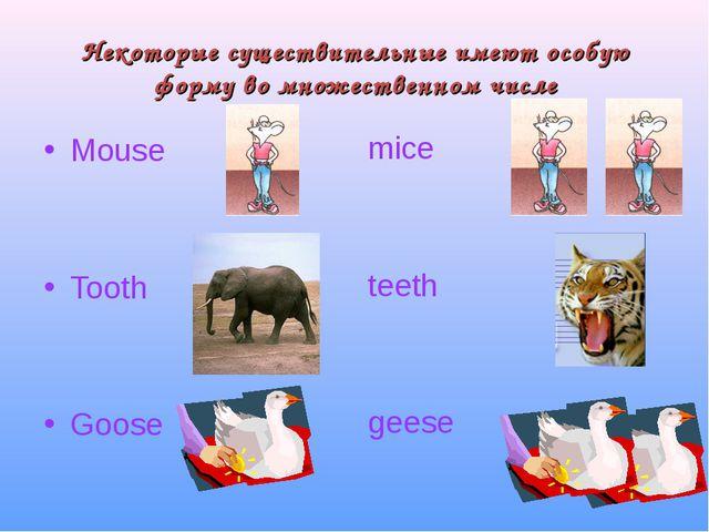 Некоторые существительные имеют особую форму во множественном числе Mouse Too...