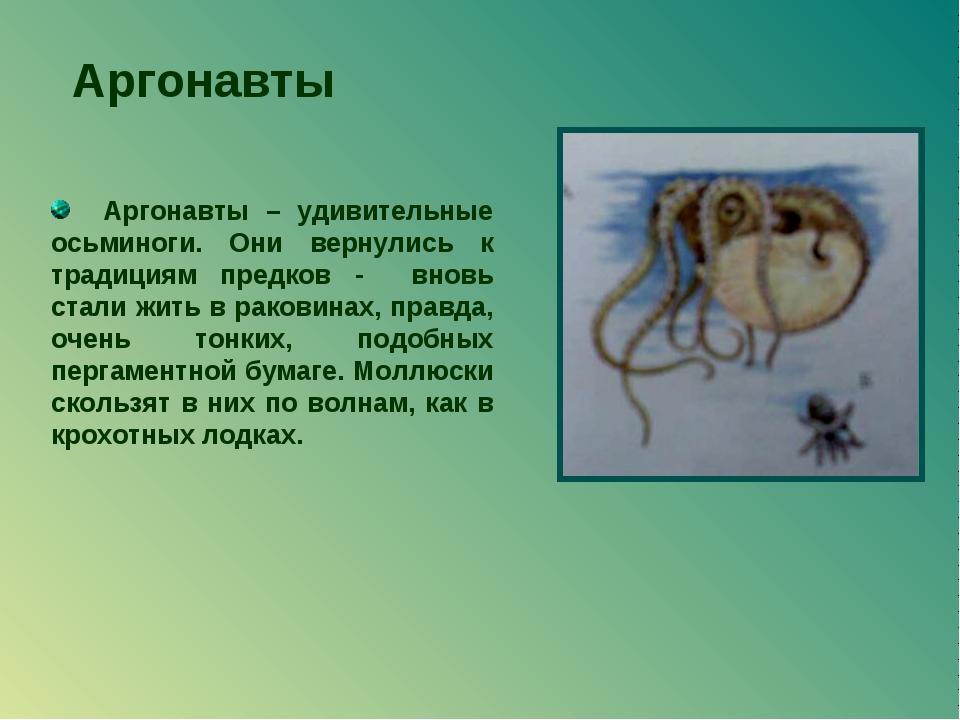 Аргонавты Аргонавты – удивительные осьминоги. Они вернулись к традициям предк...