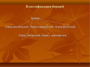 Классификация борщей борщи Борщ московский борщ украинский борщ флотский борщ