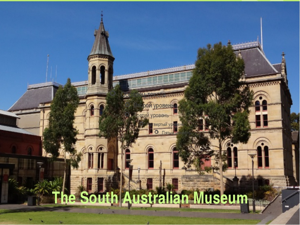 The South Australian Museum