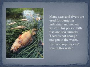 Many seas and rivers are used for dumping industrial and nuclear waste. Th