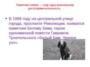 Памятник собаке— еще одна воронежская достопримечательность. В 1998 году на