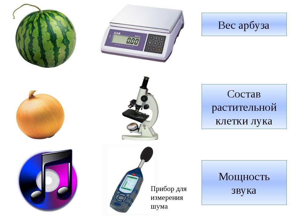 Вес арбуза Состав растительной клетки лука Прибор для измерения шума Мощность...