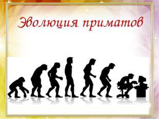 Эволюция приматов приматов