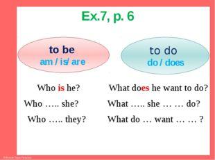 Ex.7, p. 6 Who is he? What does he want to do? Who ….. she? What ….. she … …