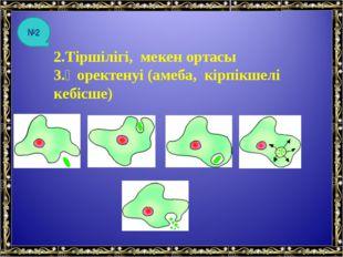 2.Тіршілігі, мекен ортасы 3.Қоректенуі (амеба, кірпікшелі кебісше) №2