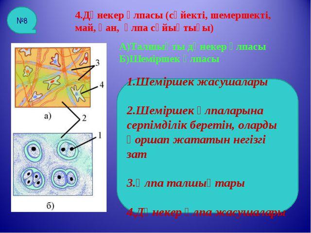 4.Дәнекер ұлпасы (сүйекті, шемершекті, май, қан, ұлпа сұйықтығы) А)Талшықты д...
