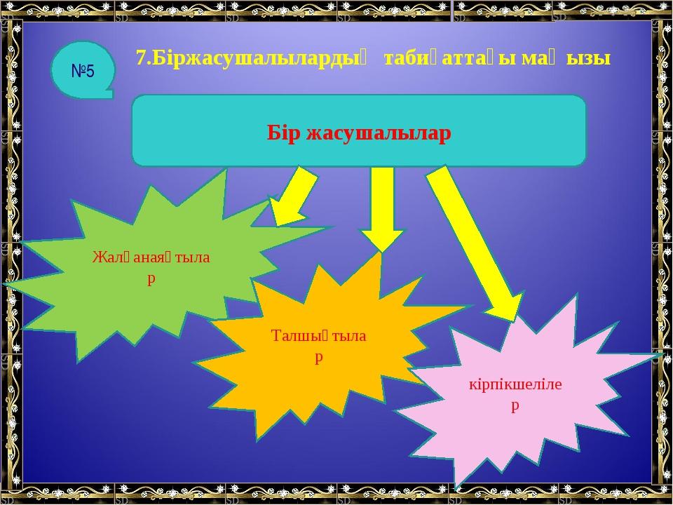 7.Біржасушалылардың табиғаттағы маңызы Бір жасушалылар Жалғанаяқтылар Талшықт...