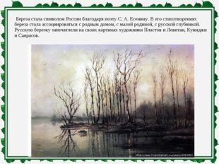 Береза стала символом России благодаря поэту С. А. Есенину. В его стихотворе