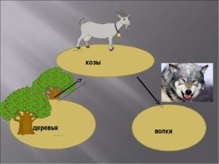 козы деревья волки