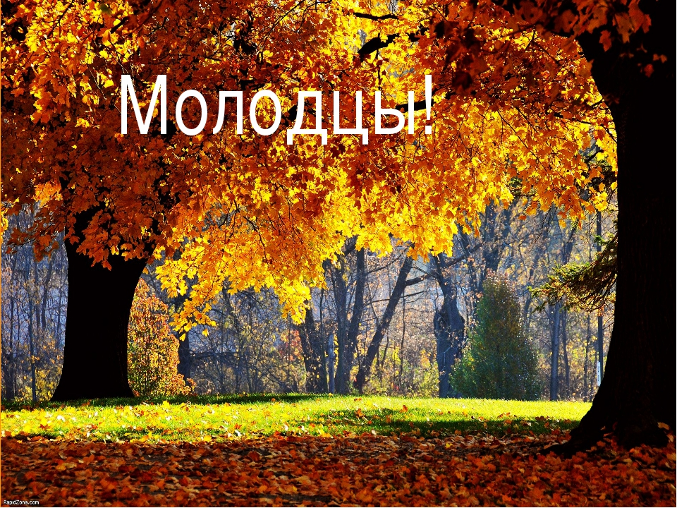 украинский слова с знаком и апострофом