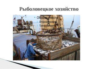 Рыболовецкое хозяйство