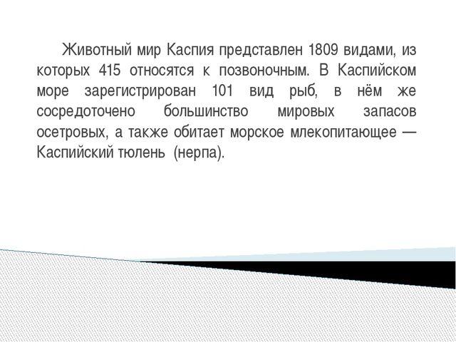 Животный мир Каспия представлен 1809 видами, из которых 415 относятся к позв...