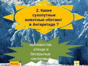 1. Как называется южная полярная область? Антарктика Выход