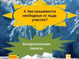 2. Какие сухопутные животные обитают в Антарктиде ? ногохвостки, клещи и беск