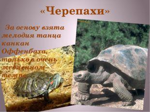 «Черепахи» За основу взята мелодия танца канкан Оффенбаха, только в очень мед