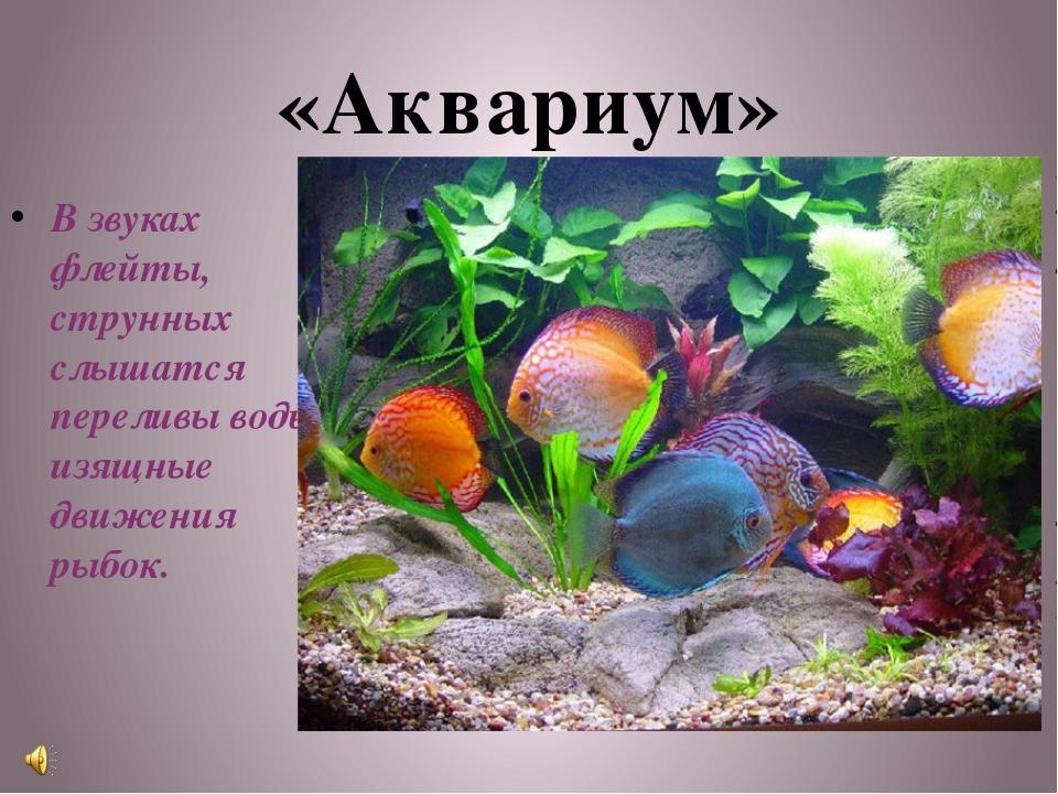 «Аквариум» В звуках флейты, струнных слышатся переливы воды, изящные движения...